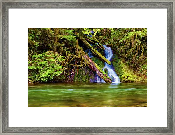 Framed Print featuring the photograph Seasonal Runoff by Dee Browning