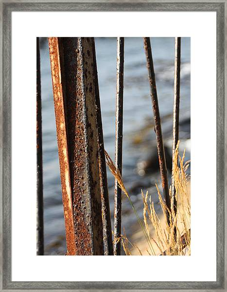Seaview Through The Fence Framed Print