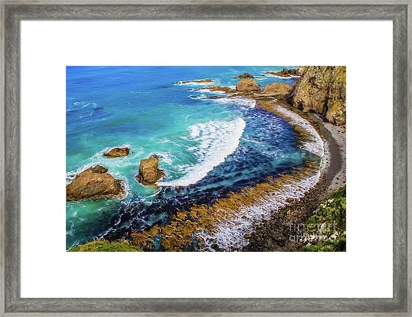 Roaring Bay At Nugget Point Framed Print