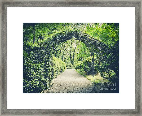 Secret Garden In Vintage Style Framed Print