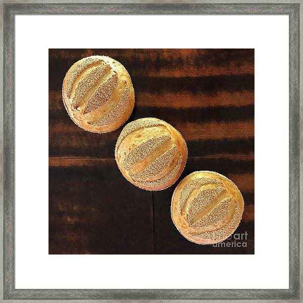 Framed Print featuring the photograph Sesame Seed Stripes 1 by Amy E Fraser
