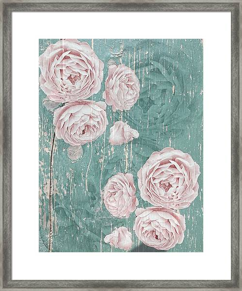 Shabby Chic Roses Distressed Framed Print