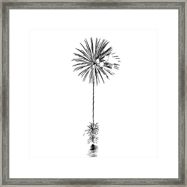 Shades Of Grey Collection Set 03 Framed Print