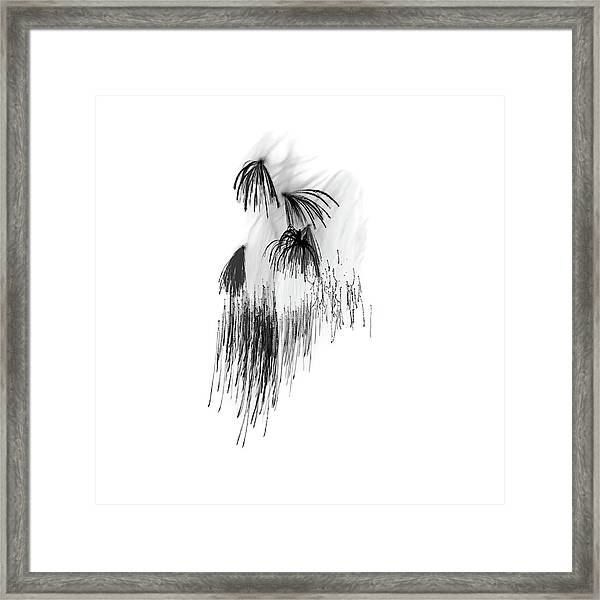 Shades Of Grey Collection Set 04 Framed Print
