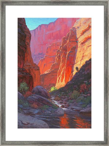 Shadow Barrel  Framed Print