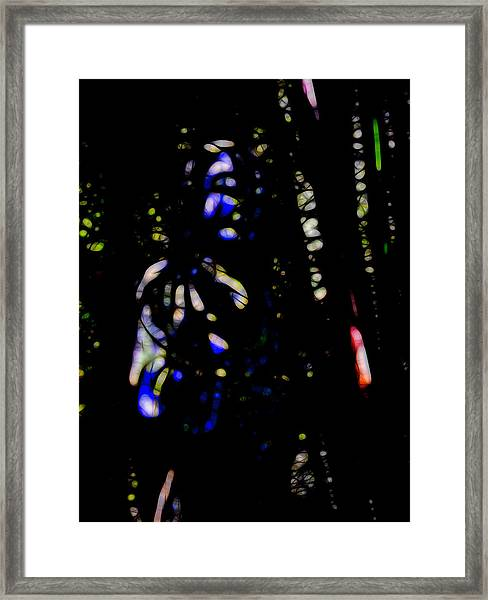 Shadow Soul Framed Print