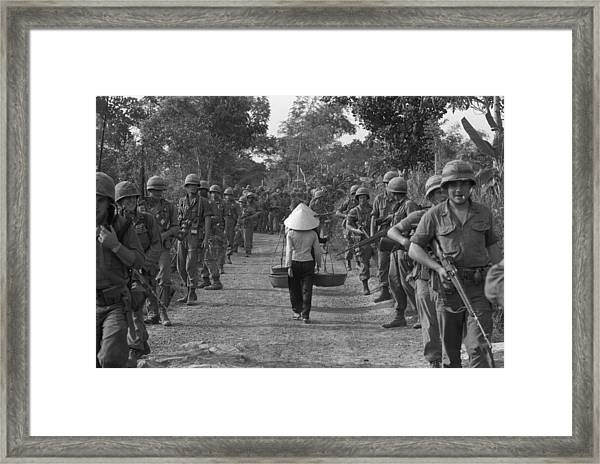 Sharing The Road Framed Print