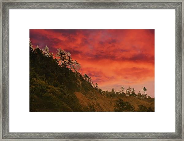 Silhouette Of Conifer Against  Seacoast  Framed Print