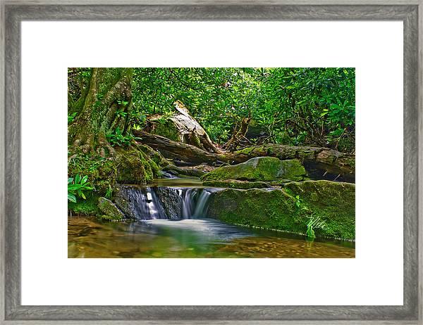 Sims Creek Waterfall Framed Print