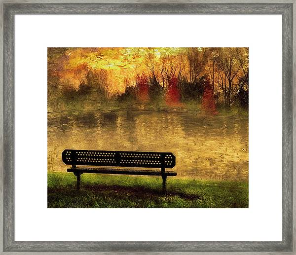 Sit And Admire Framed Print