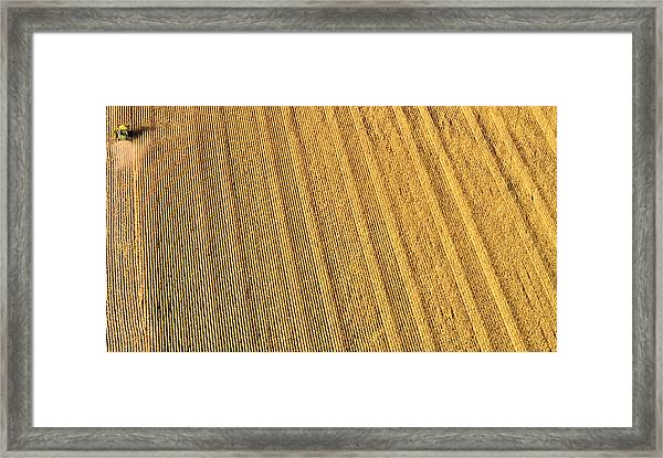 Sixty Million Kernels Framed Print