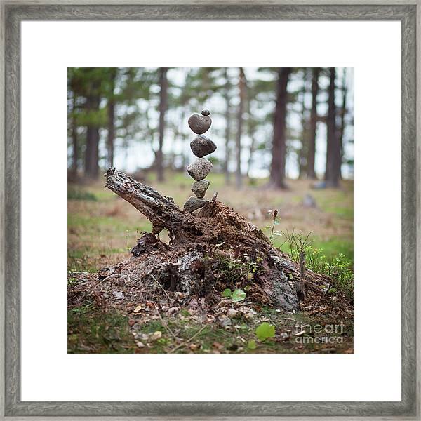 Skogstok Framed Print