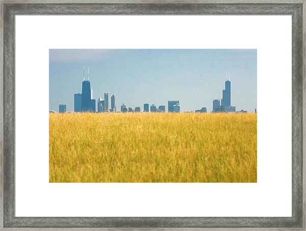 Skyscrapers Arising From Grass Framed Print by By Ken Ilio