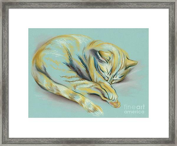 Sleeping Tabby Kitten Framed Print