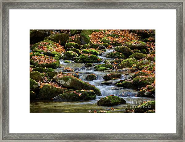 Smokey Mountain Cascades Framed Print