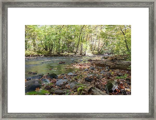 Smoky Mountin Stream Framed Print