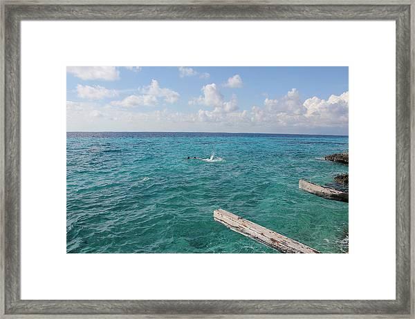 Snorkeling Framed Print