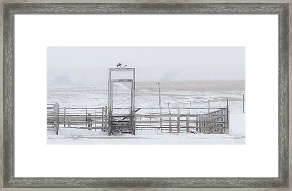 Framed Print featuring the photograph Snow And Corral 01 by Rob Graham