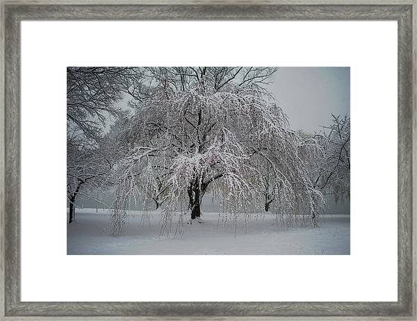 Snow And Mist By The River Framed Print
