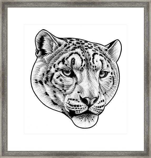 Snow Leopard - Ink Illustration Framed Print