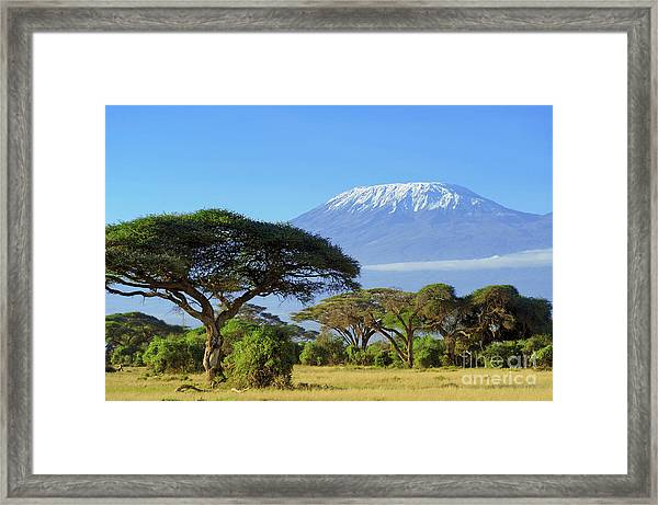Snow On Top Of Mount Kilimanjaro In Framed Print