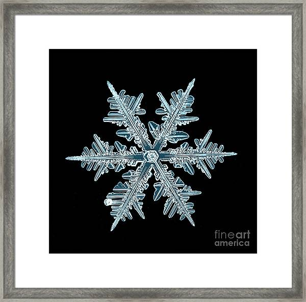 Snowflake Isolated Natural Crystal Framed Print by Kichigin