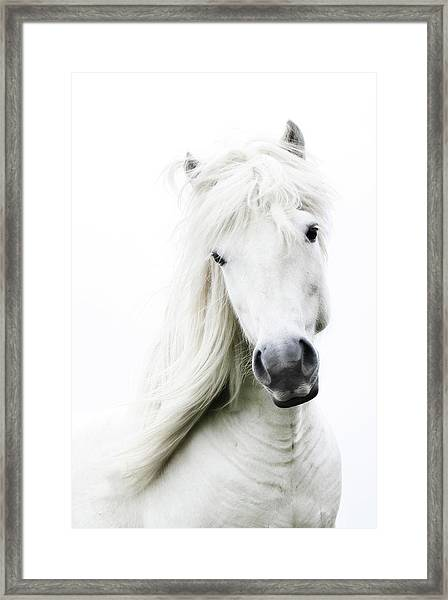 Snowhite Framed Print