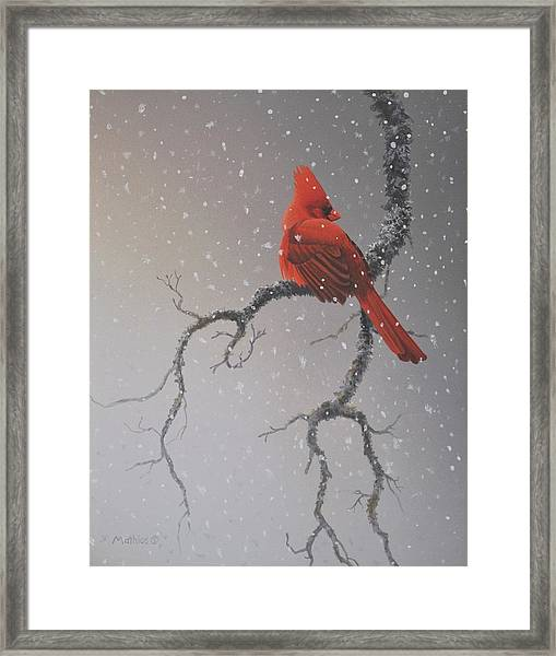 Snowy Perch Framed Print