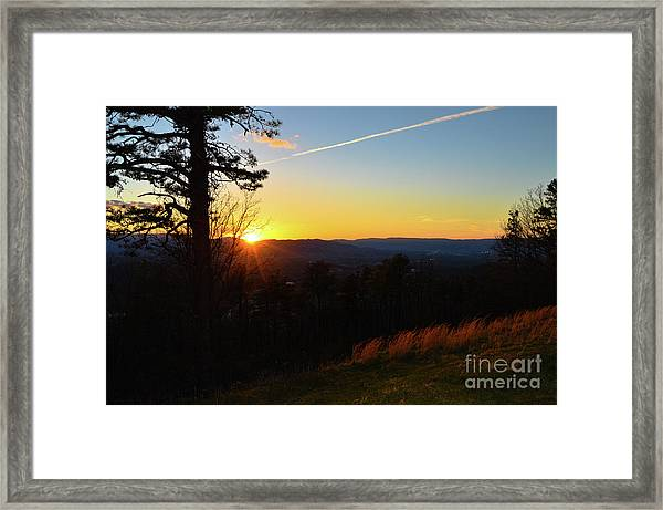 Solace And Pine Framed Print