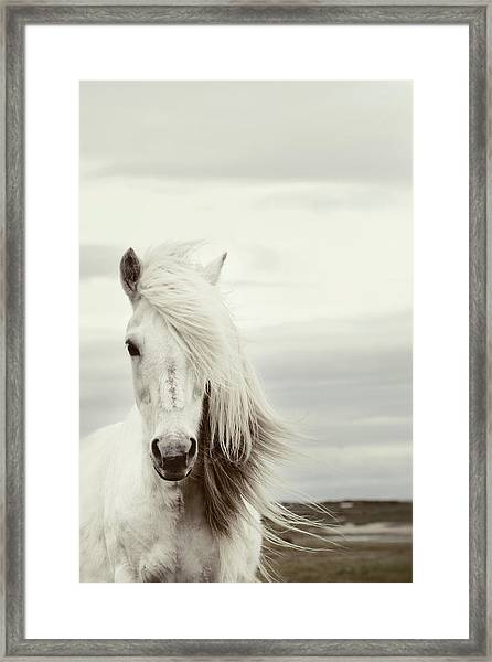 ísold Framed Print