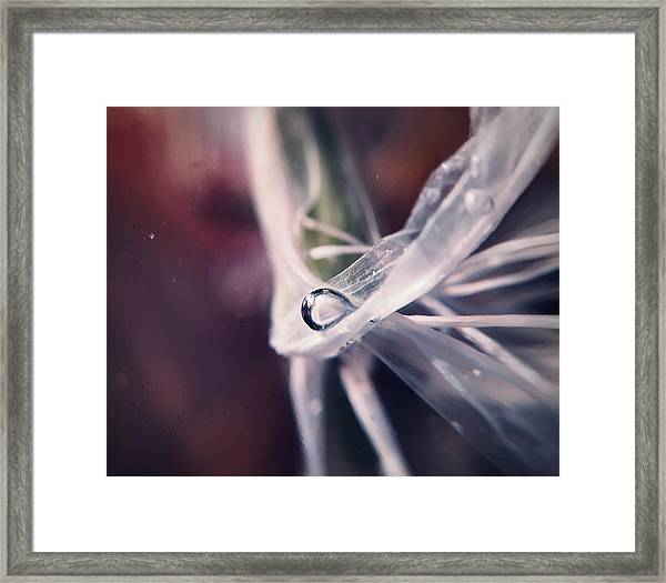 Sometimes The Alien Comes By, We Get Along Framed Print