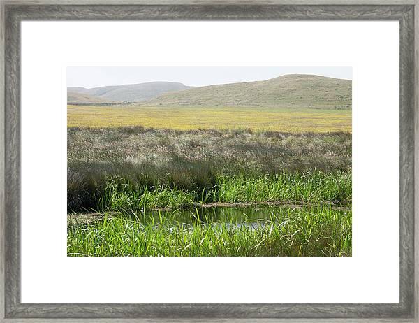 Sonoma Coast_ Al_530_18 Framed Print