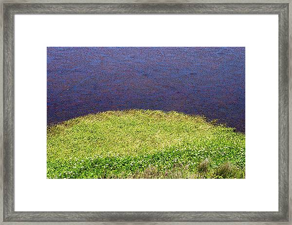 Sonoma Coast Al_697_18 Framed Print