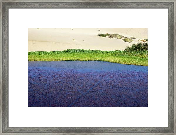 Sonoma Coast_al_562_18 Framed Print