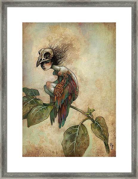 Soul Of A Bird Framed Print