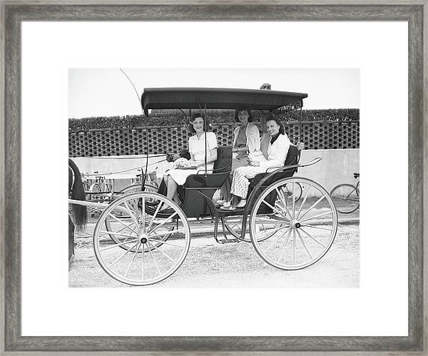 Southampton Aristocracy Framed Print