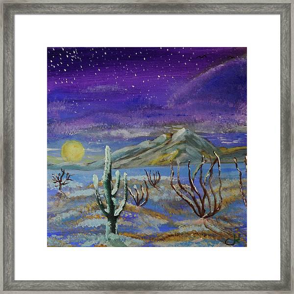 Southern Arizona Winter Magic  Framed Print