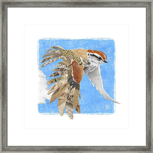Framed Print featuring the mixed media Sparrow by Clint Hansen