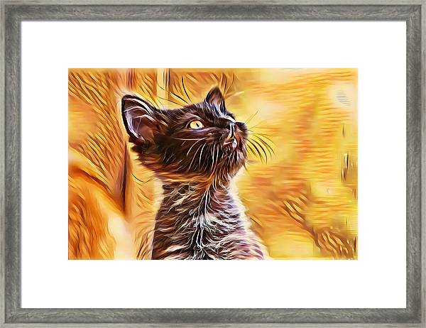 Special Long Neck Kitty Framed Print