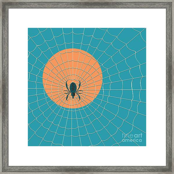 Spider In A Web On A Background Of The Framed Print