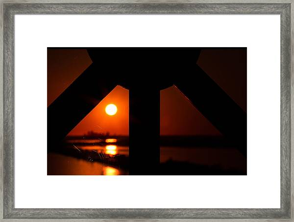 Spiderweb View Framed Print