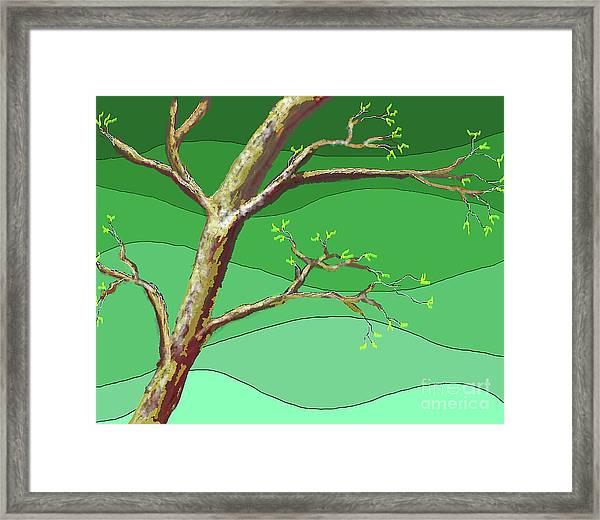 Spring Errupts In Green Framed Print