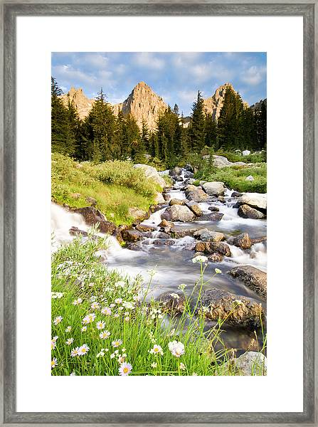 Spring Flowers And Flowing Water Below Framed Print