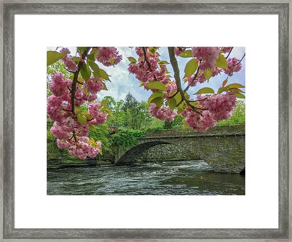 Spring Garden On The Bridge  Framed Print