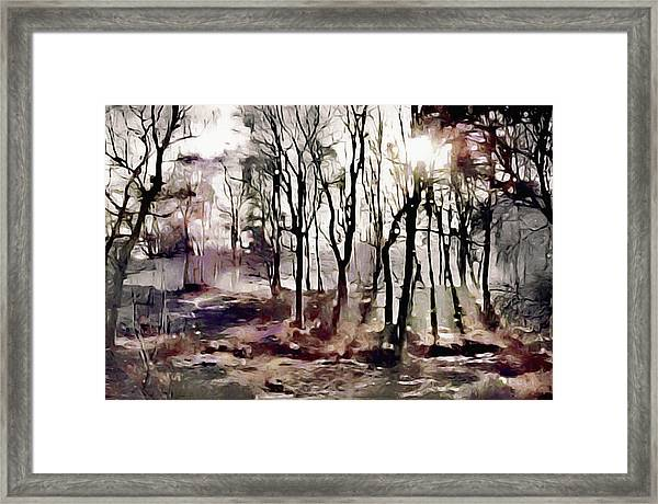 Spring Morning Mist Framed Print