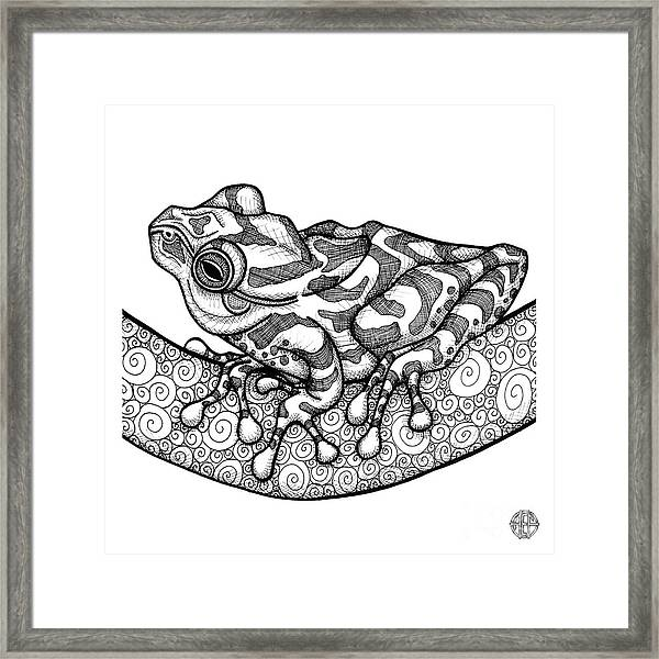 Framed Print featuring the drawing Spring Peeper by Amy E Fraser
