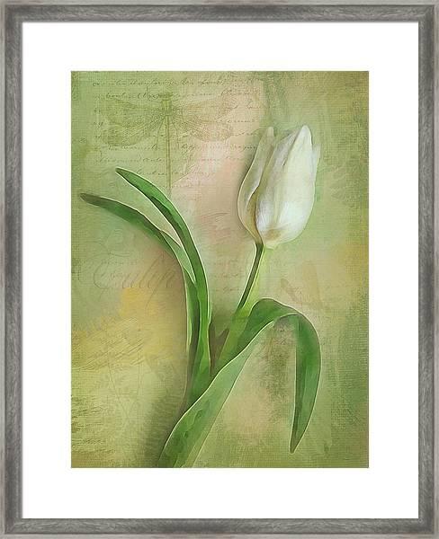 Spring Tulip Montage Framed Print