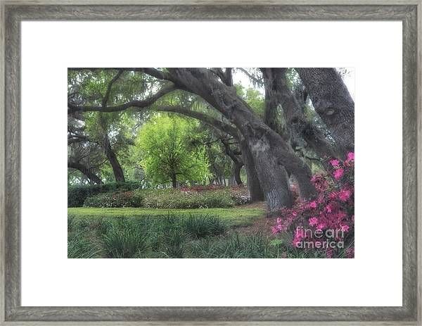 Springtime In The Park Framed Print