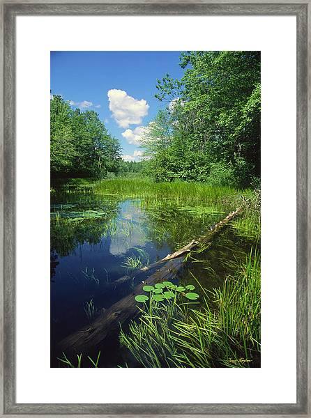 Squaw Lake Framed Print