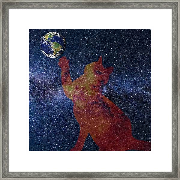 Star Cat Framed Print